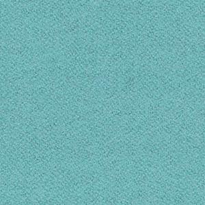 S55 - Колір світлої м'яти